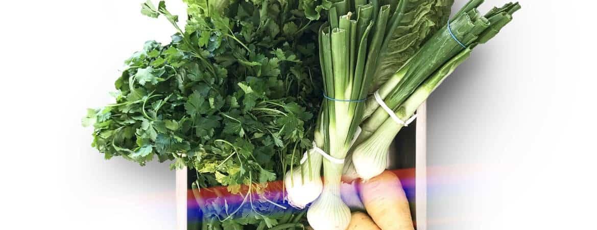 Vegetables in season now