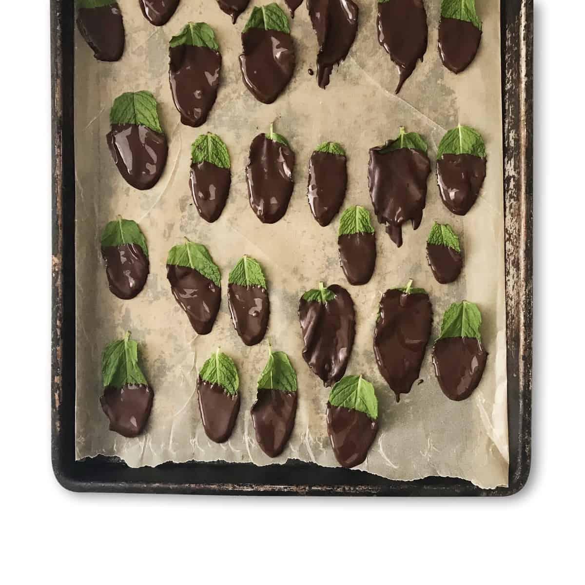 Real Chocolate Mints - Chef Whitney Aronoff | Starseed Kitchen
